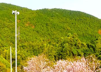 近隣地域の紹介 イメージ写真